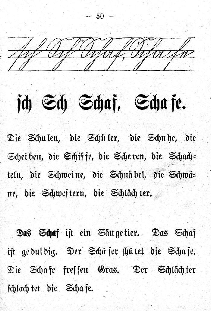 Deutsche Fibel -Sch (Schreibschrift /Druckschrift)