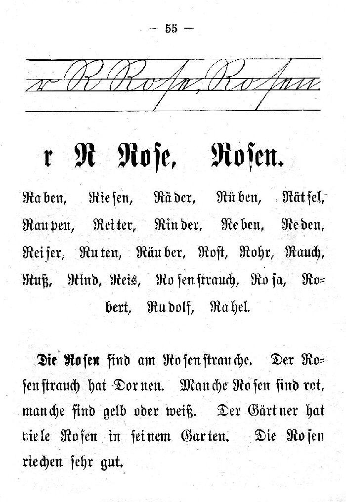 Deutsche Fibel -R (Schreibschrift /Druckschrift)