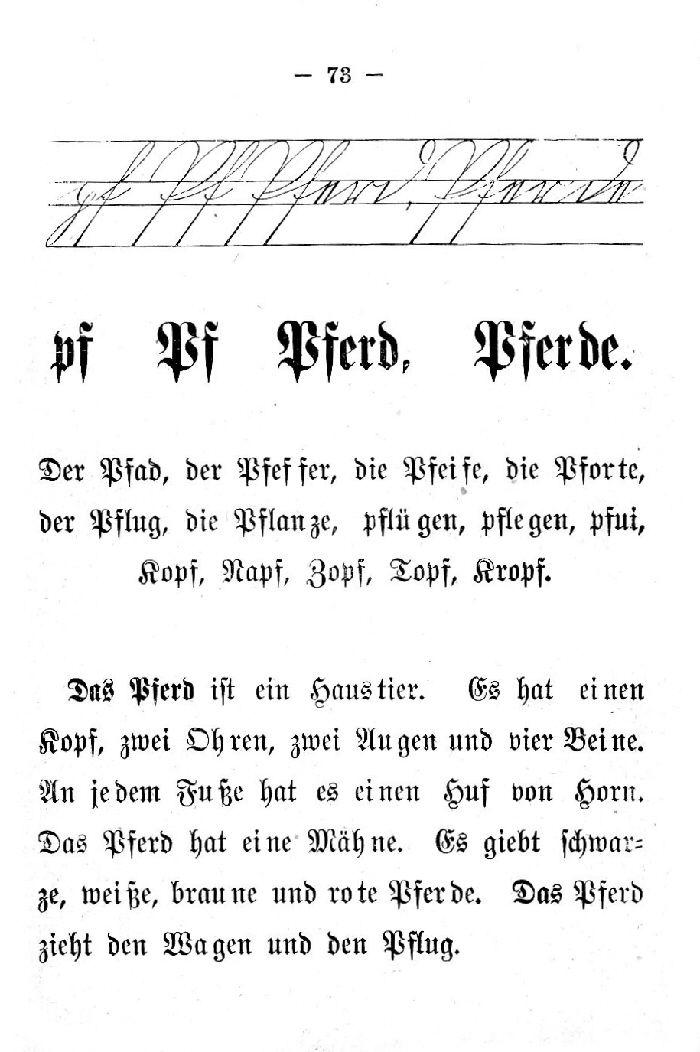 Deutsche Fibel -Pf (Schreibschrift /Druckschrift)